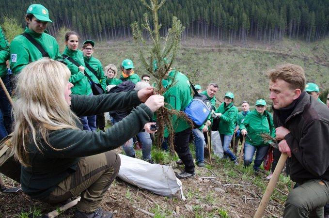 Tím Lidl privýsadbe 185 000 stromčekov.